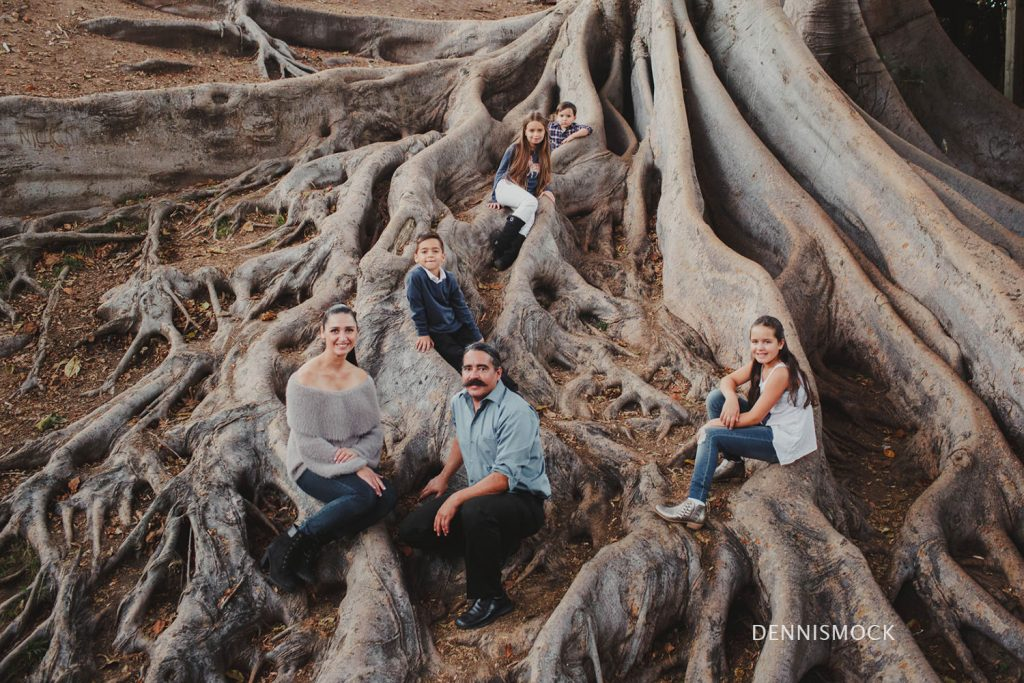 San Diego family posing within the giant fig tree in Balboa park by Dennis mock photography